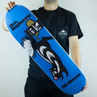 Birdhouse Ben Raybourn Germ Deck in stock.